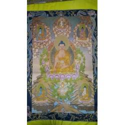 Tela Dhiany Budas
